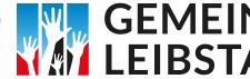 logo_dorffest_leibstadt2016